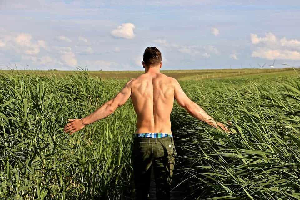 férfi-győgynövény