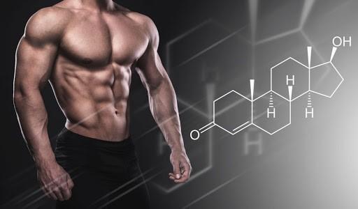 Welche Lebensmittel erhöhen Testosteron?